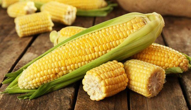 da li kukuruz goji