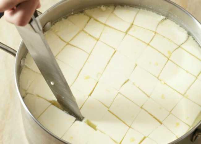 kako napraviti mocarela sir